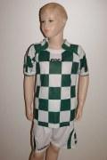 14 Legea-Fußball-Trikot-Sets  CEFALONIA  grün / weiß